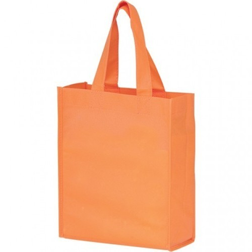 Carry Bag in Sirsa